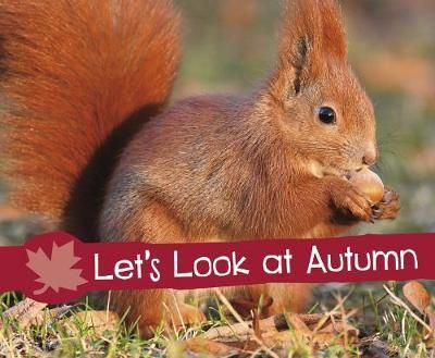 Let's Look at Autumn Badger Learning