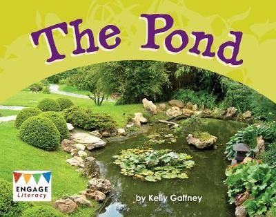 The Pond Badger Learning