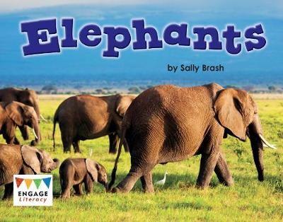 Elephants Badger Learning