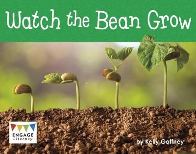 Watch the Bean Grow Badger Learning