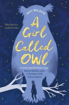 A Girl Called Owl Badger Learning