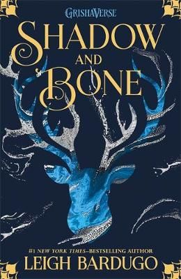 The Shadow and Bone Badger Learning