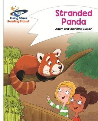 Stranded Panda Badger Learning