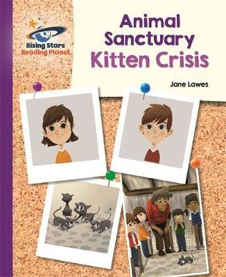 Kitten Crisis Badger Learning