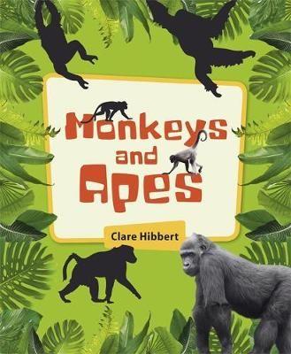 Monkeys & Apes Badger Learning