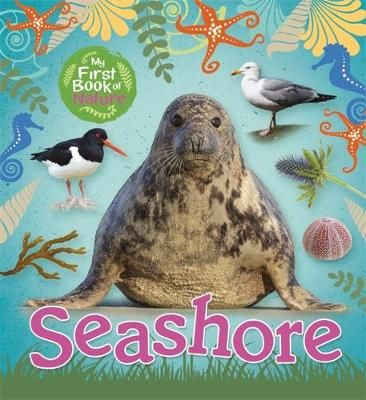 Seashore Badger Learning
