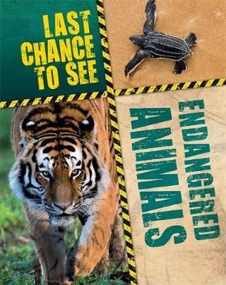 Endangered Animals Badger Learning