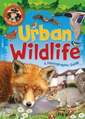 Urban Wildlife Badger Learning