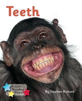 Teeth Badger Learning