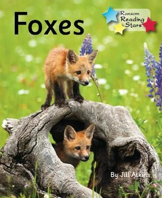 Foxes Badger Learning