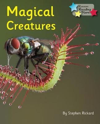 Magical Creatures Badger Learning