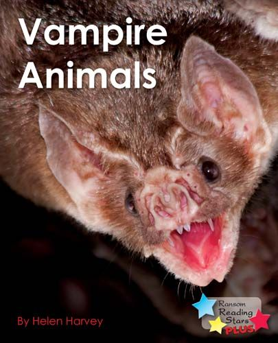 Vampire Animals Badger Learning