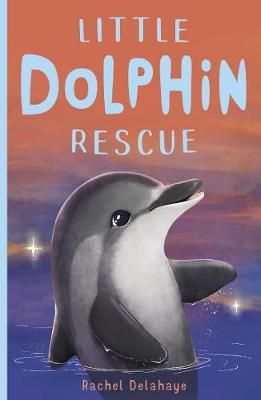 Little Dolphin Rescue Badger Learning