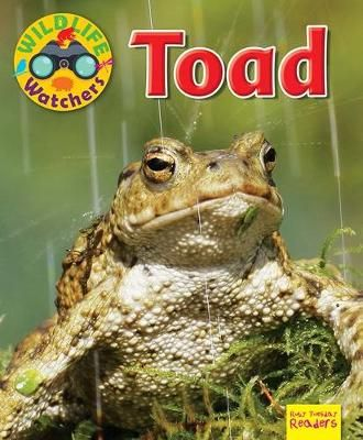 Wildlife Watchers: Toad Badger Learning