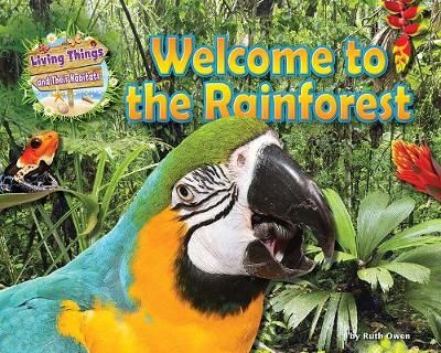 Welcome to the Rainforest Badger Learning