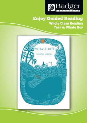 Enjoy Whole Class Guided Reading: Whale Boy Teacher Book Badger Learning