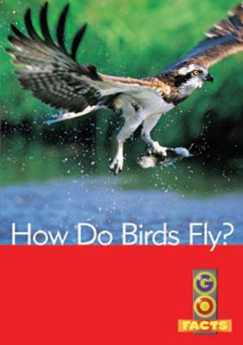 How Do Birds Fly? (Go Facts Level 4) Badger Learning