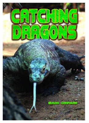 Catching Dragons Badger Learning