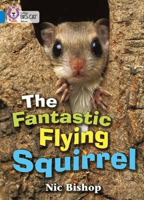 The Fantastic Flying Squirrel Badger Learning