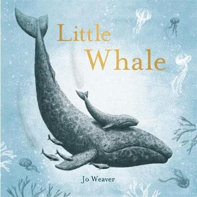Little Whale Badger Learning