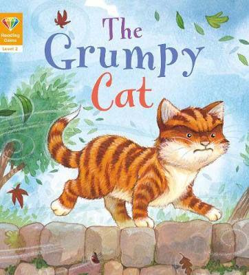Grumpy Cat Badger Learning