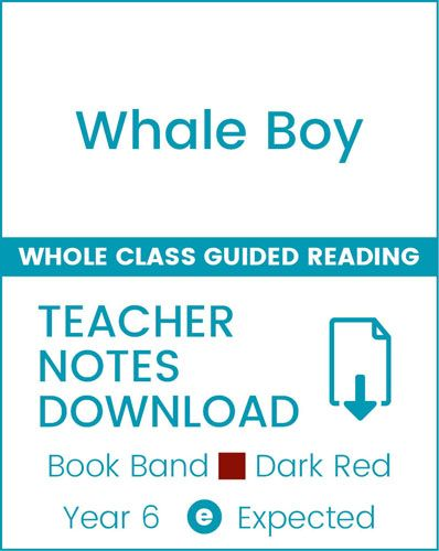 Enjoy Whole Class Guided Reading: Whale Boy Teacher Notes Badger Learning