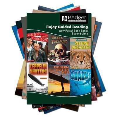 Enjoy Guided Reading Non-fiction for KS2 (at Beyond Lime Level) Pack