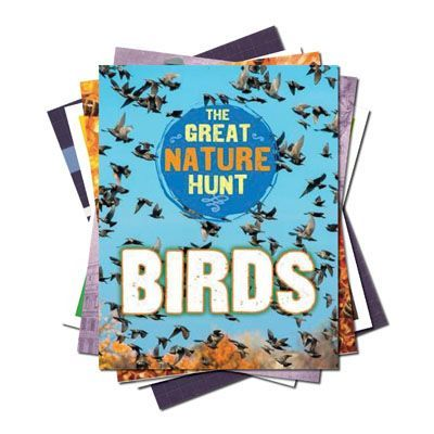 Age 7-9: Non-Fiction for Lower KS2