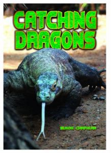 Catching Dragons