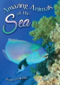 Amazing Animals of the Sea
