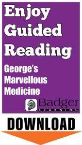 Enjoy Guided Reading: George's Marvellous Medicine Teacher Notes