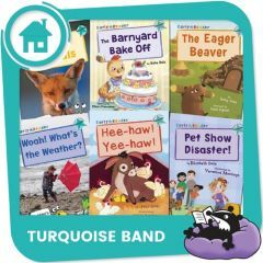 Home Reading Turquoise Band