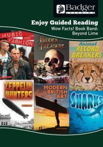 Enjoy Guided Reading Non-fiction for KS2 (at Beyond Lime Level) Teacher Book + CD