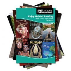 Enjoy Guided Reading Non-fiction for KS2 (at Turquoise Level) Pack