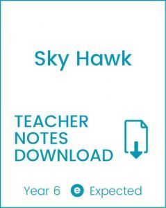 Enjoy Guided Reading: Sky Hawk Teacher Notes
