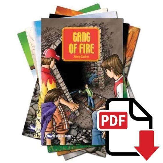 Full Flight Impact - PDF Download