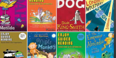 Guided Reading in Primary Classrooms