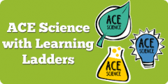 ACE Science Assessment: Top Tips for Using Learning Ladders
