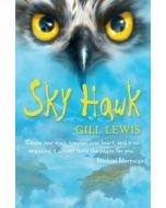 Sky Hawk - Pack of 6
