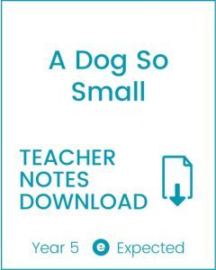 Enjoy Guided Reading: A Dog So Small Teacher Notes