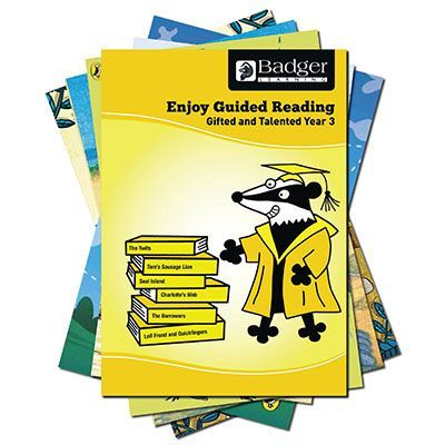 Enjoy Guided Reading Gifted & Talented Year 3 Pack