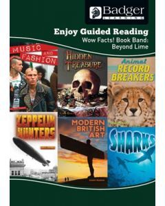 Enjoy Guided Reading Non-fiction for KS2 (at Beyond Lime Level) Teacher Book + CD