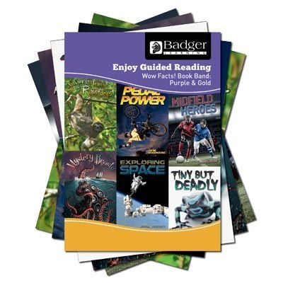 Enjoy Guided Reading Non-Fiction Purple and Gold Book Band Pack