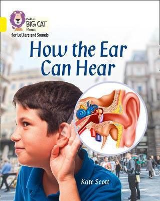 How the Ear Can Hear