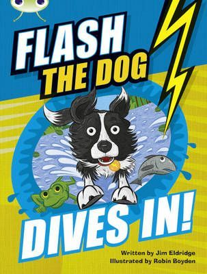 Flash the Dog Dives In!