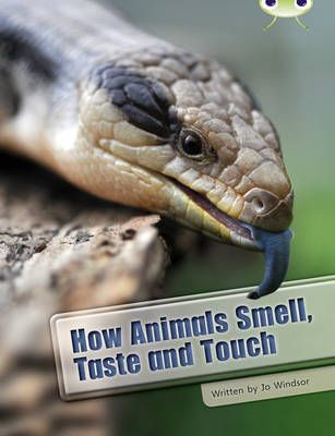 How Animals Smell, Taste and Touch
