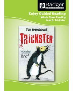 Enjoy Whole Class Guided Reading: Trickster Teacher Book
